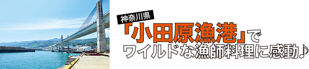 「小田原漁港」でワイルドな漁師料理に感動♪