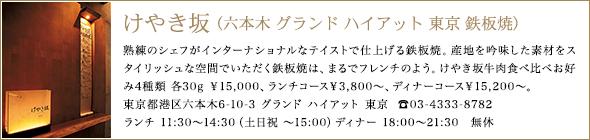けやき坂(六本木 グランド ハイアット 東京 鉄板焼)