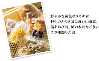 鮮やかな黄色のタモギ茸、野生のえのき茸に近い山茶茸、黒あわび茸、柿の木茸などきのこの種類も充実。