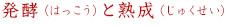 発酵(はっこう)と熟成(じゅくせい)