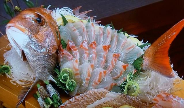 さかな歳時記「二十四節気・立夏」 味も満開。魚の王者マダイ