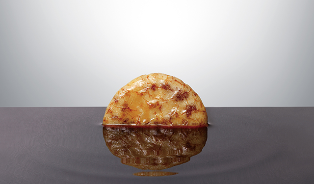 それぞれの食感と濃い味が後を引く 新煎餅ブランド「やわかたこい。」